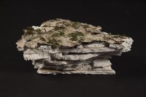 Fragments de banquise I à IX